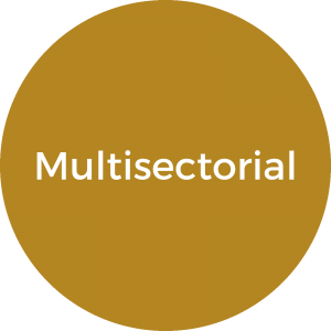 multisectorial